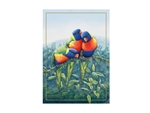 Maxwell & Williams Birds of Australia 10yr Anniversary Tea Towel 50x70cm Lorikeet-tea-towels-What's Cooking