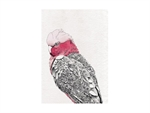 Maxwell & Williams Marini Ferlazzo Birds Tea Towel 50x70cm Galah-tea-towels-What's Cooking