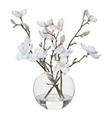Rogue Magnolia White in Sphere Vase -pot-plants-and-arrangements-What's Cooking Online Store